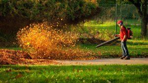 fall leaf yard clean up in stillwater